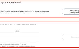 Личный кабинет СБИС онлайн — вход в систему на СБИС ру