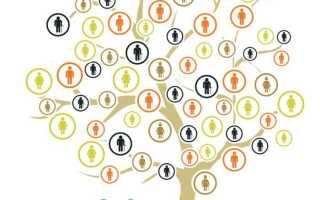 Как восстановить генеалогическое древо